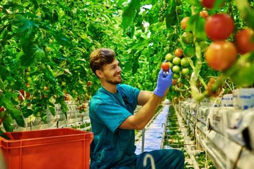 Lendületben az agrárium és az élelmiszeripar