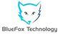 BlueFox Technology Kft. - Állás, munka