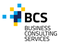 BCS BUSINESS CONSULTINGSERVICES KFT. - Állás, munka