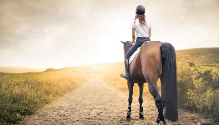 Félünk a váltástól? Segít a lovas önismeret!