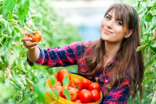 Keresik a szakképzett agrármunkaerőt