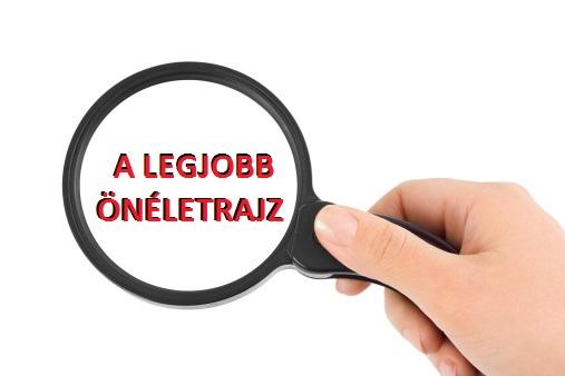 önéletrajz célok ambíciók minta Ezt keresték a munkaadók az önéletrajzban 2014 ben   Profession.hu önéletrajz célok ambíciók minta