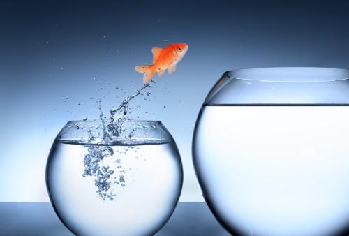 Amikor eljön a váltás ideje - munkahelyváltás, önismeret, elhatározás