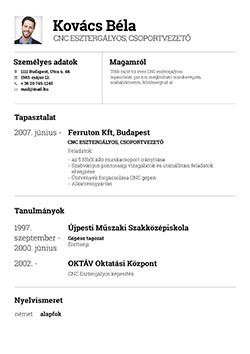 önéletrajz minta pdf Önéletrajz készítő   Profession.hu önéletrajz minta pdf